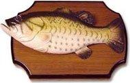 Разделка рыбы речной