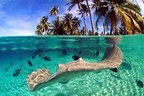 Туры в Савусаву, Фиджи