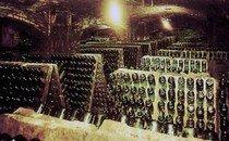 Игристые испанские вина - Кава (Cava)
