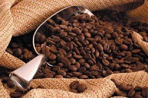 Тысячелетние зерна кофе