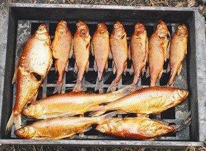 Правильное копчение рыбы на природе