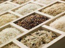 Как классифицируется рис