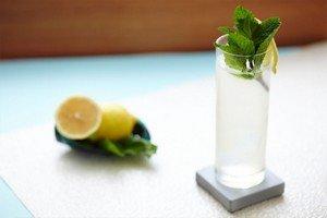 Ингредиенты для приготовления цитрусового напитка