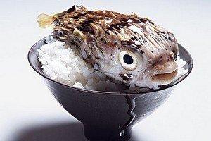 Профилактика отравления рыбой фугу