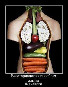 Вегетарианство изнутри