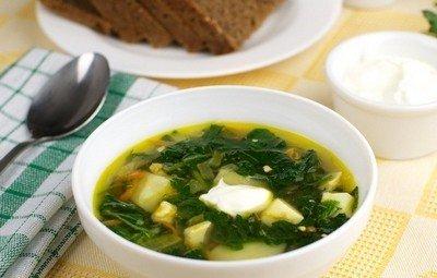 Рецепт приготовления вкусного зеленого борща