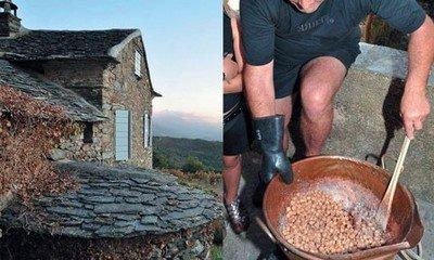 Приготовление домашнего корсиканского джема из каштанов