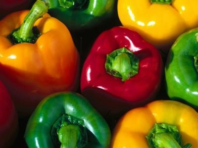 Как выращивать сладкий перец и чили дома