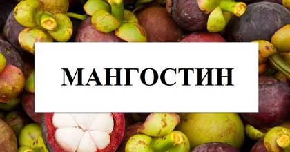 Мангостин: особенности и ценность плода