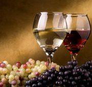 Главные страны производители вина
