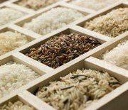 Классификация риса